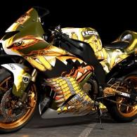 Motorbike Exhibition